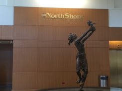 NorthShore University HealthSystem (Highland Park, IL); Brass Dimensional Letters and Logo