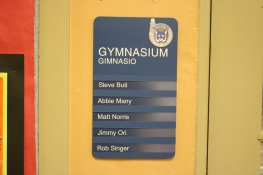 Braeside Elementary School (Highalnd Park, IL); ADA Tactile & Braille Gymnasium Sign with 5 Window Units + 5 Inserts with High Performance Vinyl Copy + Logo